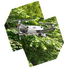 Svi lete s dronovima, pa bih letio i ja …